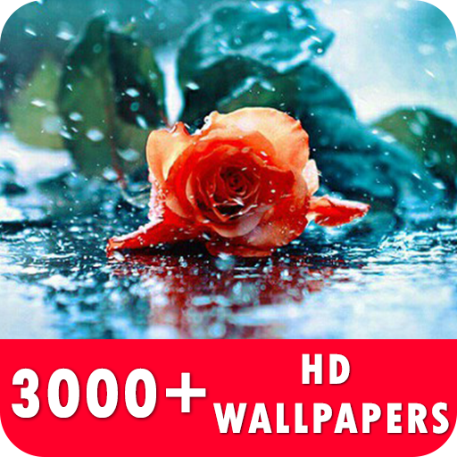 Rain Live Wallpapers HD