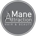 Mane Attraction icon