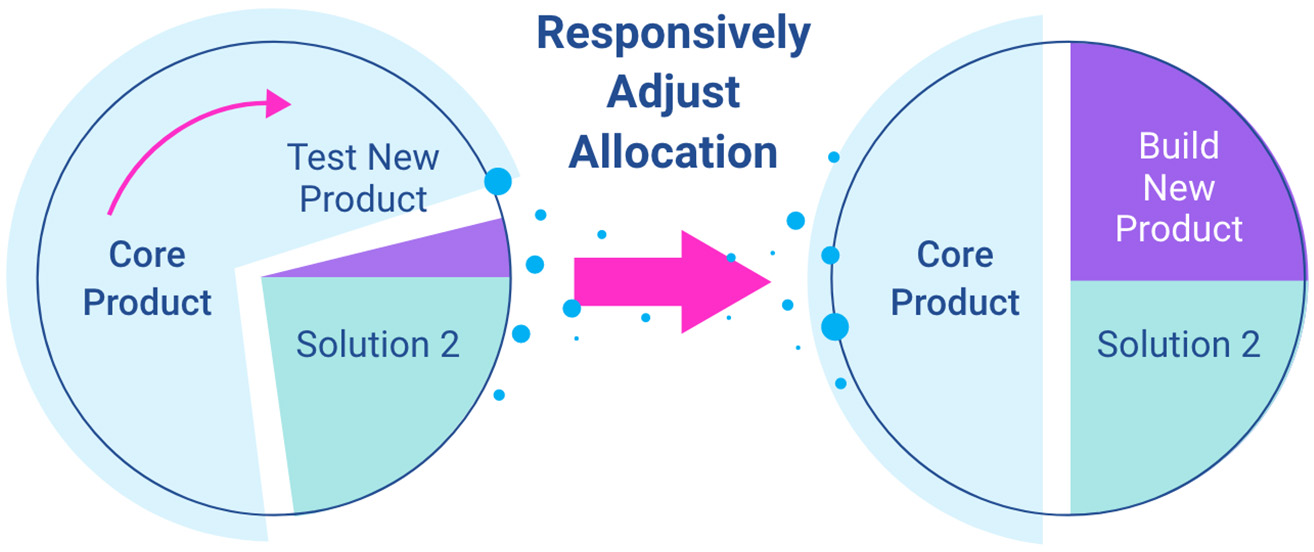 responsive re-allocation, product portfolio management