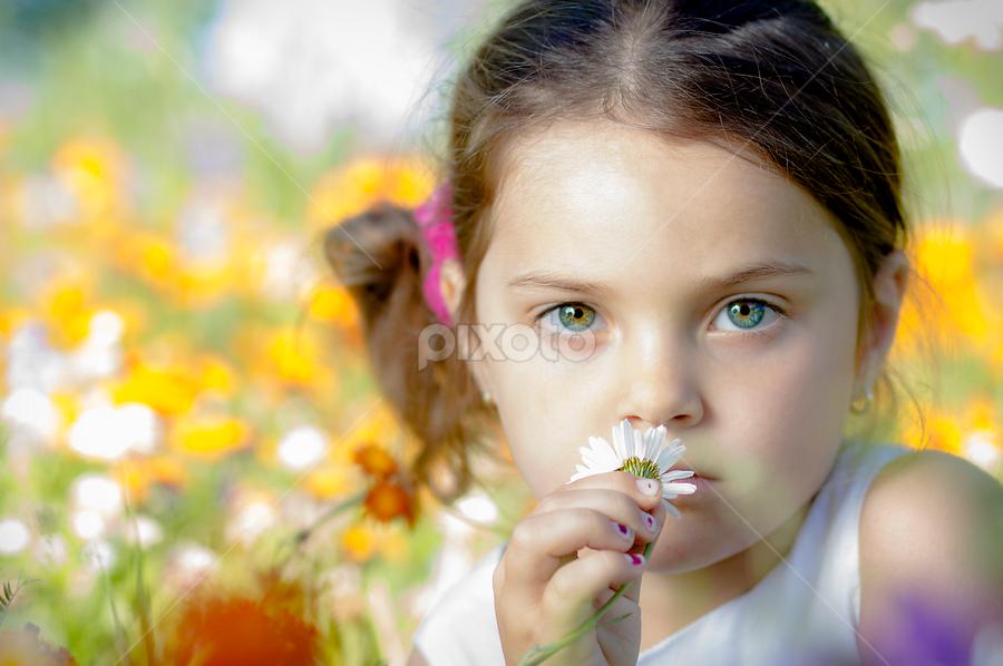 Mini-Miss Janne by Stéphan Savard - Babies & Children Child Portraits ( child, teen, children, flowers, portraits )