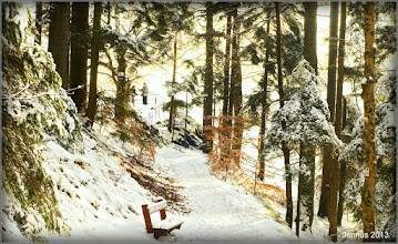 Photo: Winter walk in the Vosges (France)
