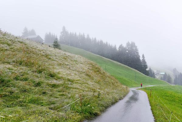 Abländschen, BE, Svizzera, luglio 2017. di Cristhian Raimondi