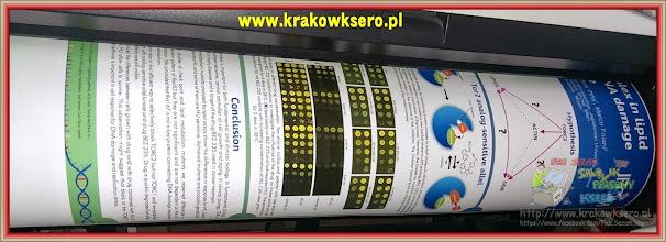 Photo: poster A1 usługa druku realizowana na poczekaniu