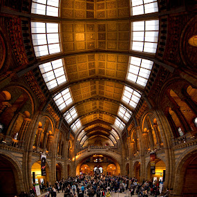 Natural History Museum  by Roland Shanidze - Buildings & Architecture Public & Historical ( uk, london, roland shainidze, hdr< vertorama, architecture interior )