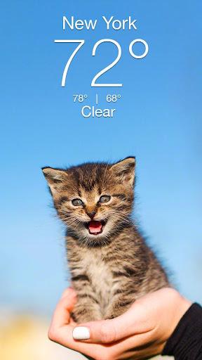 Weather Kitty screenshot 1