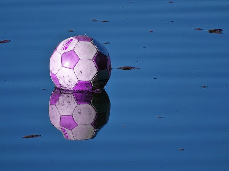 Pallone nello stagno di dan