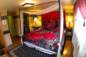 Photo: Canopy Room