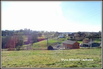 terrain à Trie-sur-Baïse (65)