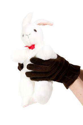 Trolleri-kanin