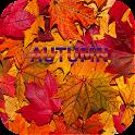 Autumn Backgrounds icon