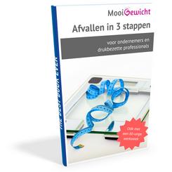 Afbeelding e-book Afvallen in 3 stappen