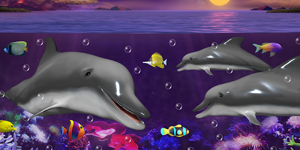Dolphins and orcas wallpaper screenshot 4