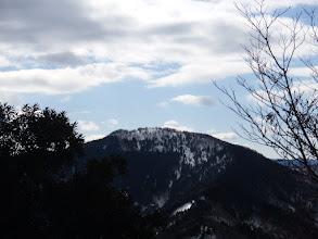 百里ヶ岳近影