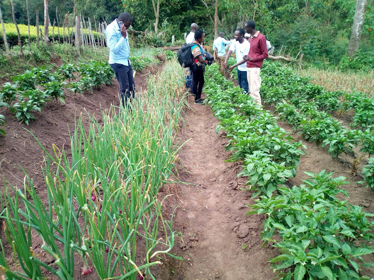 Fewer youths enrolling in agricultural courses