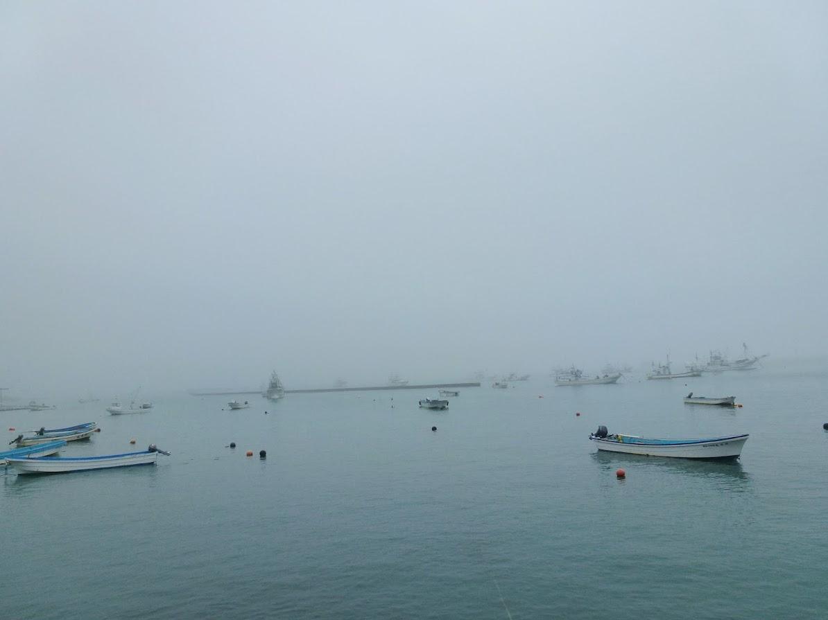雨の日の泊浜漁港(2012.6.9)