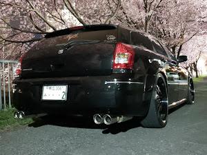 マグナム  SEのカスタム事例画像 shu(Team′s Lowgun北海道)さんの2019年05月02日22:57の投稿