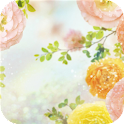 Nice flowers. HD wallpapers icon