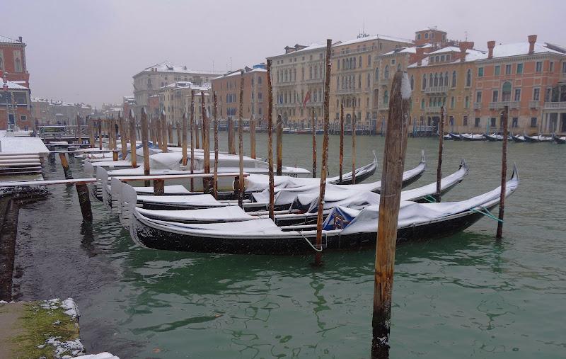 Venezia imbiancata di renzo brazzolotto