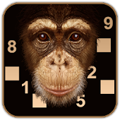 Beat the chimp - Brain puzzle