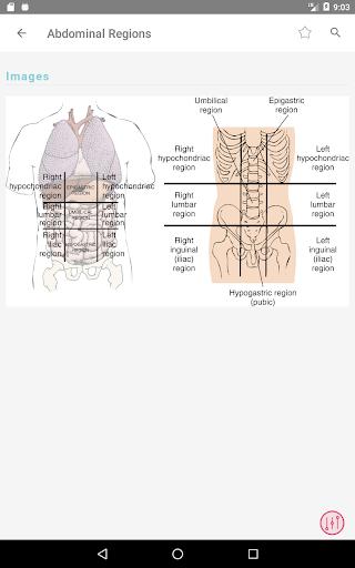 Taber's Cyclopedic (Medical) Dictionary 23rd Ed. 3.5.14 Screenshots 18