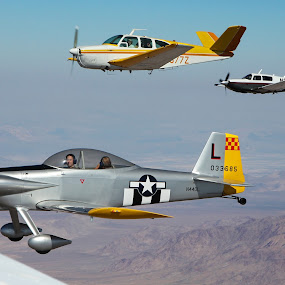 Four Ship by Liesl Ross Photos - Transportation Airplanes ( aviation, airplanes, comanche, rv-4, mooney, bonanza, piper )