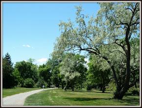 Photo: In Cheesman Park, Denver CO