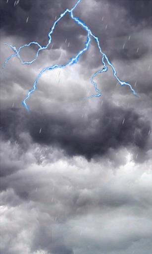 闪电的暴风雨和雨林