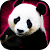 Slots Lucky Panda Casino Slots file APK Free for PC, smart TV Download