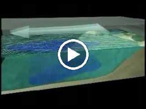 Video: การยกตัวของน้ำลึกใต้มหาสมุทร (0.5 MB)