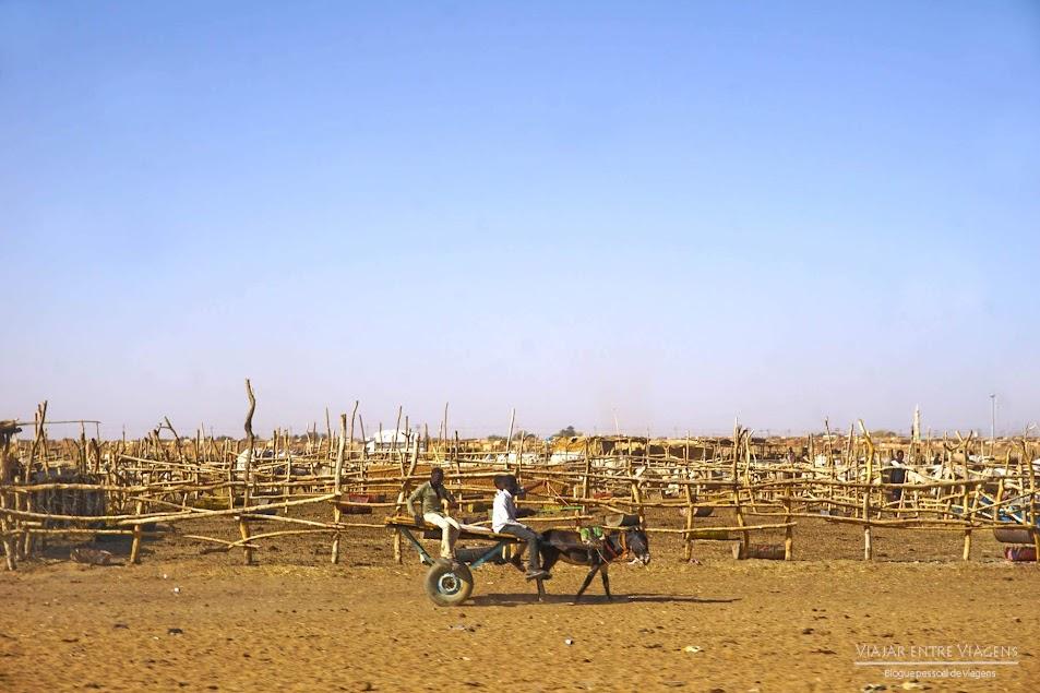 DIA 8 - Os segredos escondidos de Cartum e Omdurman - Crónicas de Viagem | SUDÃO