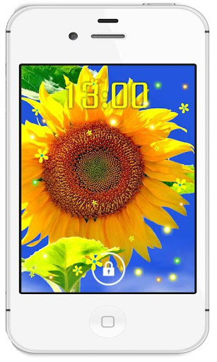 Sunflower Photo live wallpaper