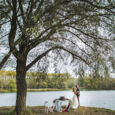 Wedding photographer Andrey Alekseenko (Oleandr). Photo of 03.11.2016