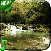 Forest Stream Live Wallpaper