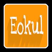 eokul VBS