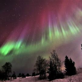 by Roald Heirsaunet - Landscapes Starscapes