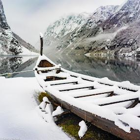 Viking Ship by George Nichols - Transportation Boats ( water, viking, winter, ship, snow, travel, landscape, flam, boat, norway, fjord )