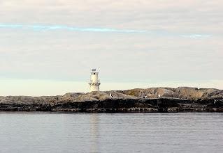 Photo: Trutar på Eggskär.