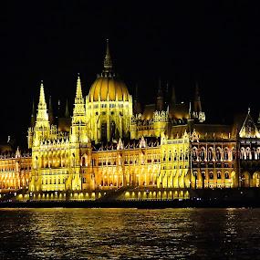 Parliament - Budapest,Hungary by Andjela Miljan - City,  Street & Park  Night (  )