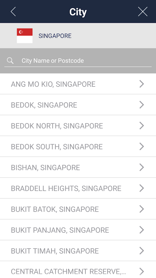 BringGo Southeast Asia- screenshot