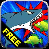 Hungry Sea Shark Evolution