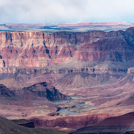 Grand Canyon by Andrew Stevenson - Landscapes Mountains & Hills ( arizona, south rim, grand canyon, landscape, colorful )