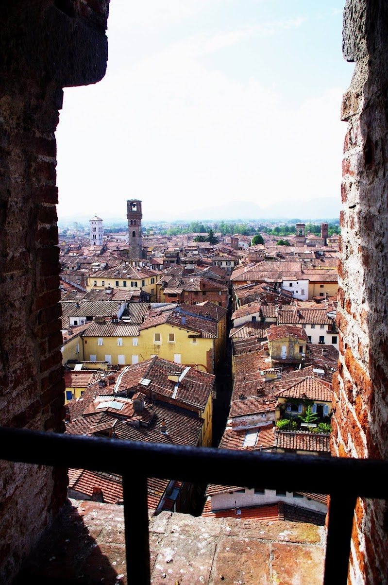 Lucca.  di micphotography