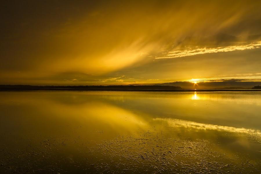 Golden Sunset by Andy Hutchinson - Landscapes Sunsets & Sunrises ( clouds, sunset, gold, golden, river )