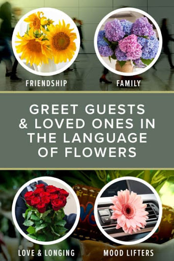 A Guide to Choosing the Perfect Flowers for Travelers