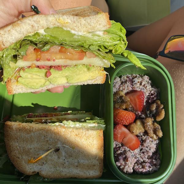 Avo sandwhich on GF breaf with quinoa side