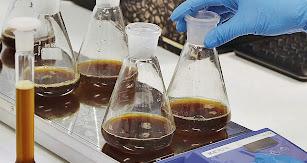 Agroalimentación, biotecnología, ciencias y técnicas de la salud, son algunas de las áreas de investigación de la UAL.