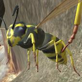 Tải Wasp Nest Simulator miễn phí