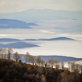On the right place by Dejan Ilijic - Landscapes Mountains & Hills ( inversion, mountain, autumn, fog )