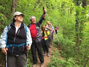 Photo: Planinari, naprijed !