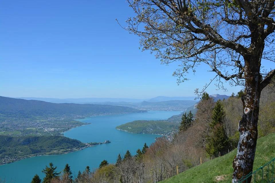 Une image contenant arbre, extérieur, ciel, eau  Description générée automatiquement